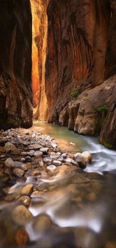 The heart of the Narrows in Zion National Park, Washington, Utah, USA  | Canyon Beam | by Michael Anderson