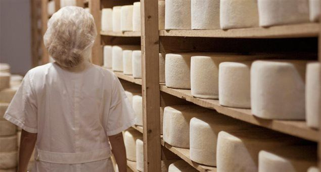 Naxos: The King of Cheese | Naxos.gr