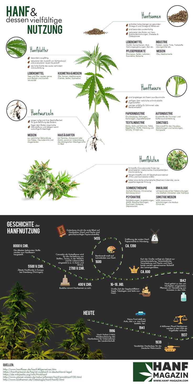 Infografik: Hanf
