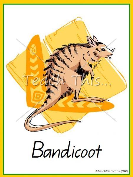 Australian Animals - 21 cards