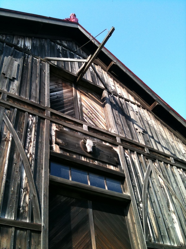 Model Barn(sapporo city)