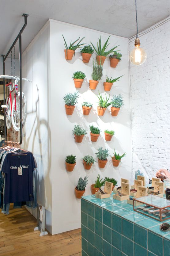 succulents at @cotofficial Amsterdam...I love this.