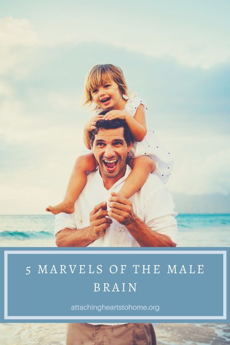 Five Marvels of the Male Brain