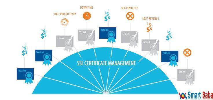 Buy cheap Server SSL CertificateDubai, UAE