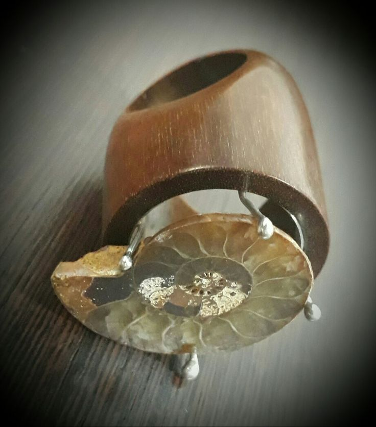 Ammonite fossil and ipe wood ring by kingwoodbrazil