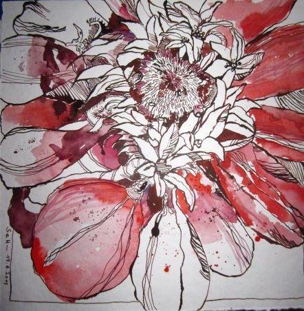 Rote Blume - Zeichnung von Susanne Haun - 30 x 30 cm - Tusche auf Bütten