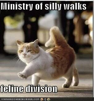 Great walk! #cat #humor #cats #funny #meme #quotes #lolcats #cute =^..^= www.zazzle.com/kittyprettygifts