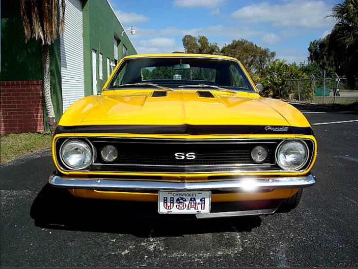 325 Best Images About 1967 Muscle Cars On Pinterest