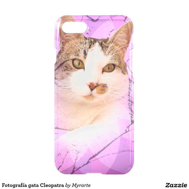 Fotografía gata Cleopatra. Producto disponible en tienda Zazzle. Tecnología. Product available in Zazzle store. Technology. Regalos, Gifts. Link to product: http://www.zazzle.com/fotografia_gata_cleopatra_iphone_7_case-256257906940676316?CMPN=shareicon&lang=en&social=true&rf=238167879144476949 #carcasas #cases #cat #gato #kitten