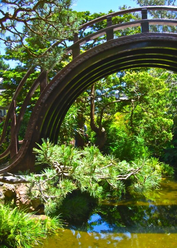23 best Japanese Tea Garden San Francisco images on Pinterest ...
