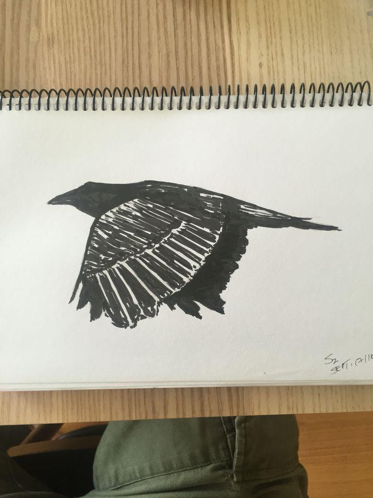 Crow.  Tofino.   4x6. Ink pen. Scobie.  Sept 17, 2016