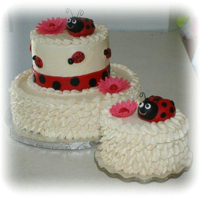 Ladybug Smash Birthday Cake