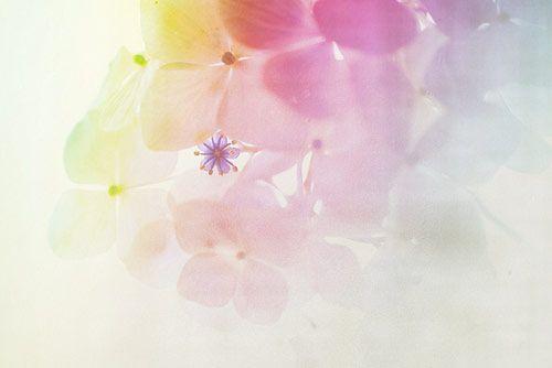 Pastel Inspiration - More pastel ideas here: http://mylusciouslife.com/prettiness-luscious-pastel-colours/