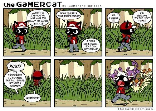 The Gamer Cat -- Trainer Basics