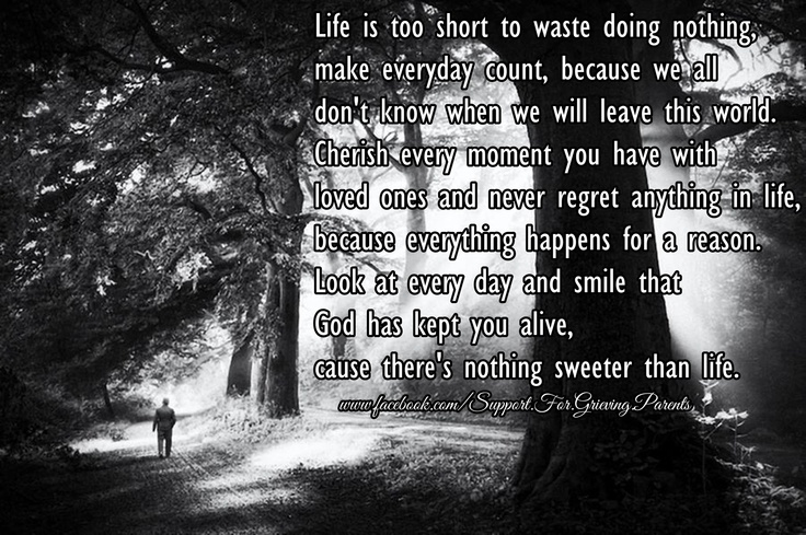 Every Moment Counts Quotes: Life Is Too Short To Waste Doing Nothing, Make Everyday
