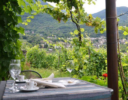 Wine Hotel Retici Balzi, Italy   West London Living    Oct 2014
