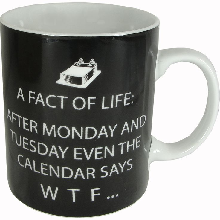 Facts of Life After Monday... Humorous Porcelain Mug