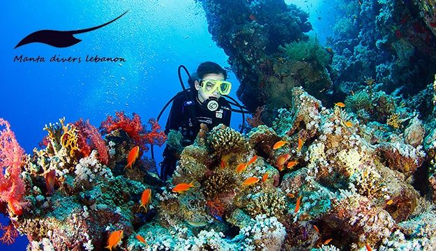 50% Off 2-Hour Discovery Dive from Manta Diving Center, Jounieh (Only $50 instead of $100) - Makhsoom