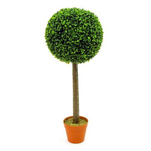 Pyöreä puksipuu