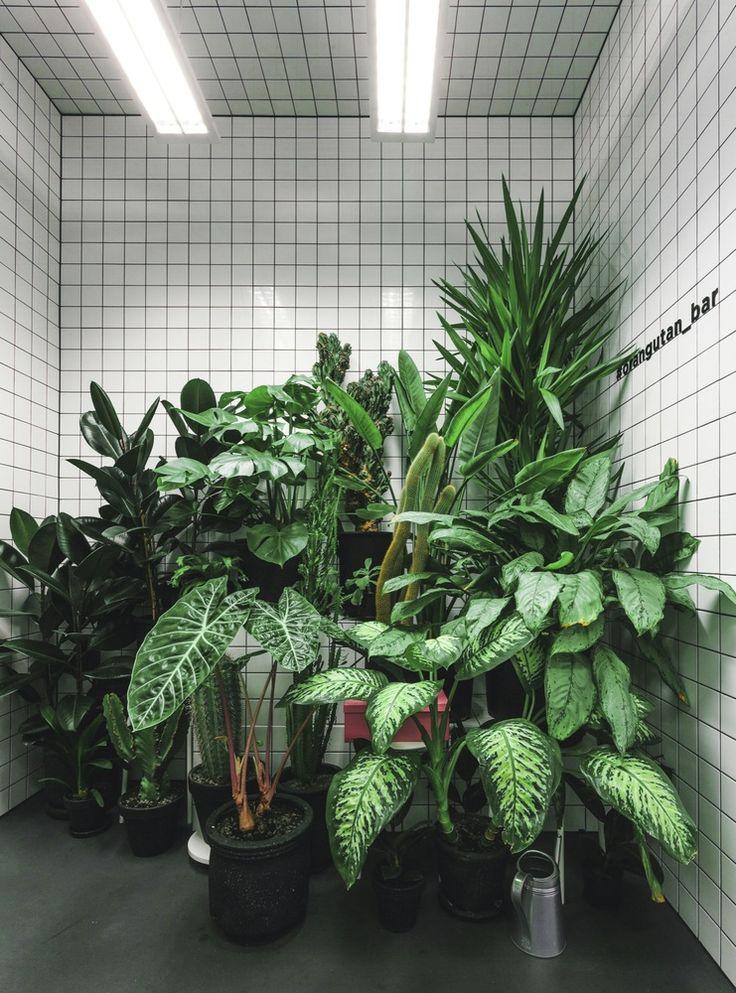 Gallery - Orang+Utan Vegetarian Bar / AKZ Architectura + Yulia Savlepova - 7