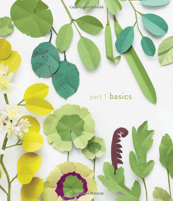 225 best paper flora images on pinterest paper flowers papercraft the exquisite book of paper flowers a guide to making unbelievably realistic paper blooms mightylinksfo