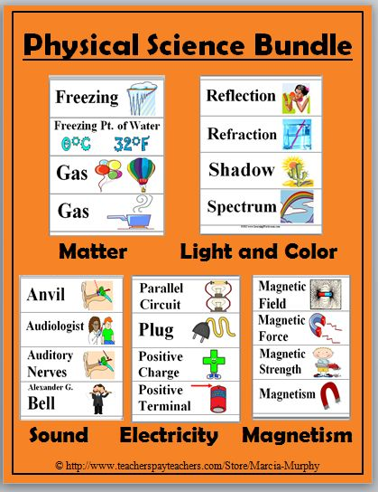 Science Illustrated Word Wall Cards - Matter + Light + Sound + Electricity + Magnetism