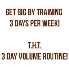 Best 3 Day Workout Routine