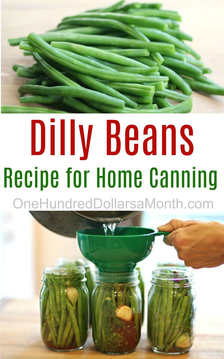 If you have OCD and you'd like to give canning a try, than this is the recipe for you. Not only is it an easy peasy recipe because you are cold packing your vegetables, but for me, being able to line my beans up in the jar was a total rush. I loved every second …
