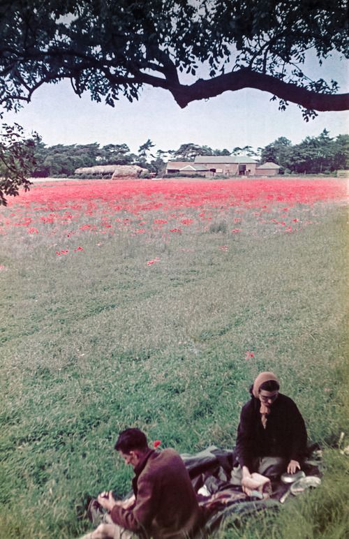 Lincolnshire Wolds, 1939