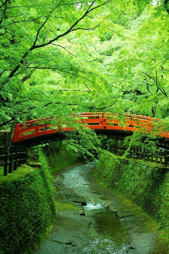 Kitano-tenmangu (shrine), Kyoto