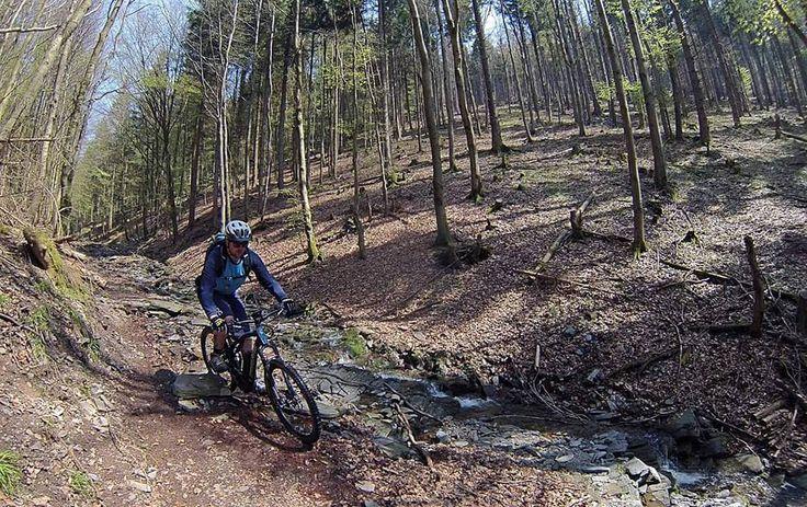 Instagram picutre by @herrzapf: Bestes Trailwetter auf unserer Tour zum 1. Mai. Danke an @stephans_radwelt und Biken mit Freunden für diese tolle Tour. #lapierre #overvolt #bosch #ebike #thegoodlife #trail #mountainbikelife #mountainbike - Shop E-Bikes at ElectricBikeCity.com (Use coupon PINTEREST for 10% off!)