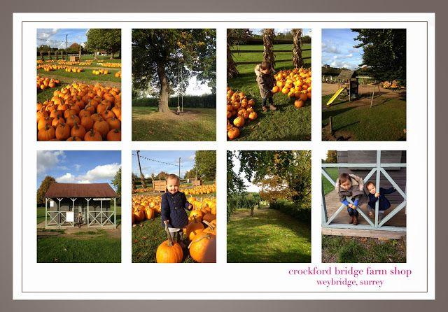 Crockford Bridge Farm Shop Halloween in Surrey #pumpkinpatch
