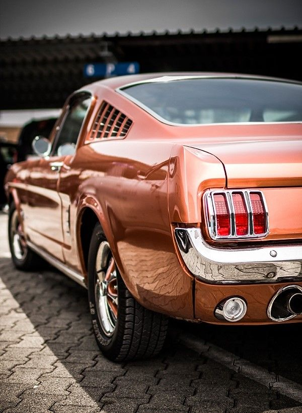 Beautiful Ford Mustang Fastback. Not sure if it's a '65 or '66.