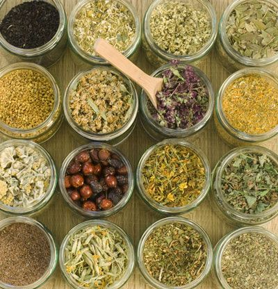 Herbal Apothecary 101: 12 Essential Herbs in Our Apothecary