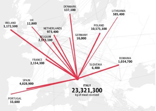 A Look Inside The European Horse Meat Trade