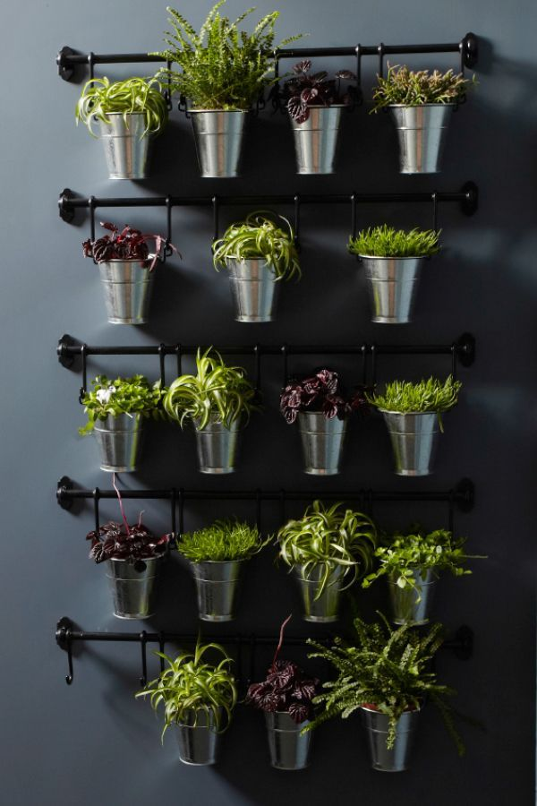 U0027Vertical Gardening Is One Of The Best Ways To Bring The Outdoors In If You