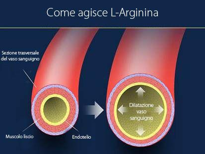 Perché L-Arginina aiuta a produrre più sperma?  http://www.semenax.it/come-produrre-piu-sperma.html