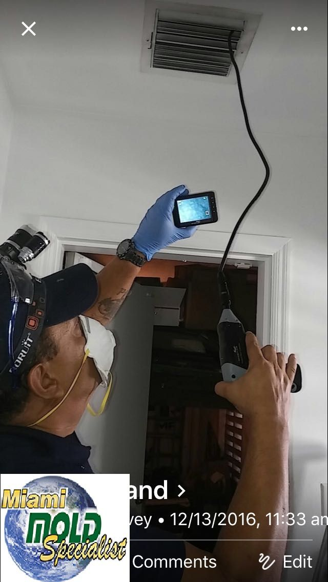 "Mold Remediation North Miami Beach  We provide a simple, no-nonsense approach to #fixing #mold #problems that we like to call ""Miami Mold Specialists."" Call Us Now 8305-763-8070 Guaranteed LOWER price than the competitor! http://www.miamimoldspecialists.com/ http://www.miamimoldspecialist.com/"