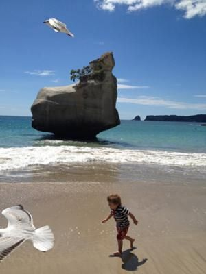 Peter O'Carroll took the photo 'Stolen view at Cathedral Cove'. The Cathedral Cove is a popular natural sight on the east side of the Coromandel Penninsula.