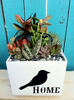 New planters- hot out of the kiln!