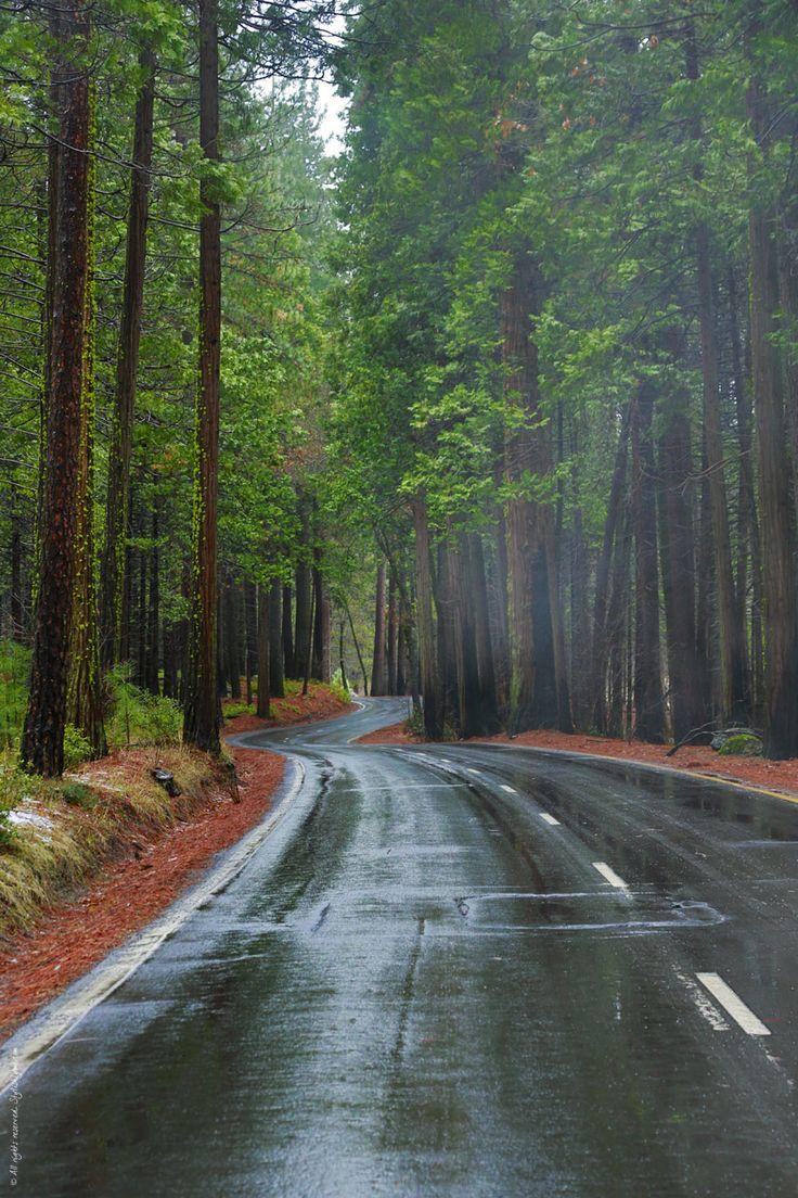 Yosemite in Winter - Amazing Photos of California's Winter Wonderland | Stylishlyme | Personal Fashion Blog