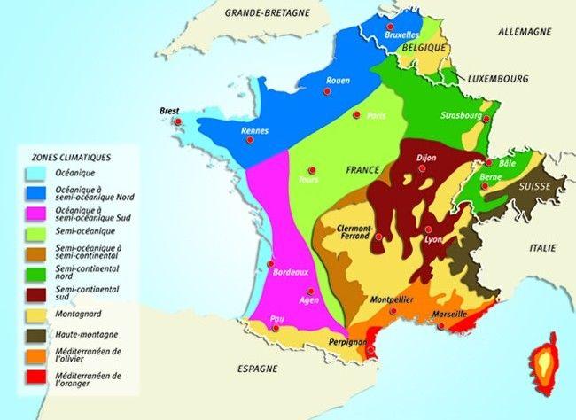 www.rustica.fr - Potager : quand semer et planter région par région, selon le climat
