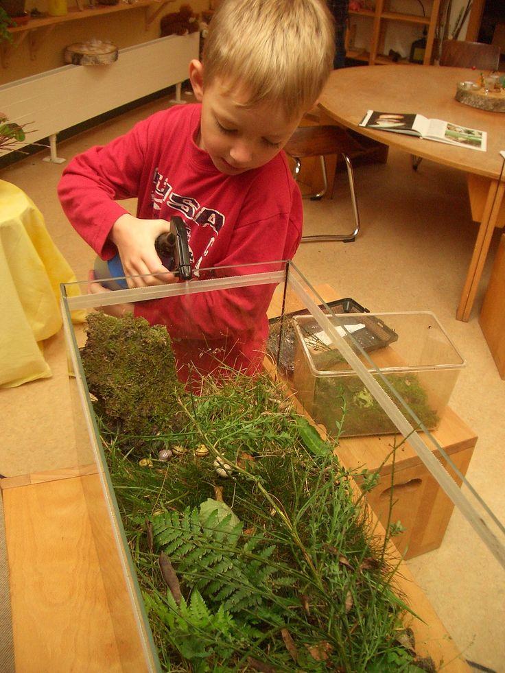 Schneckenprojekt | Kindergarten Ideen