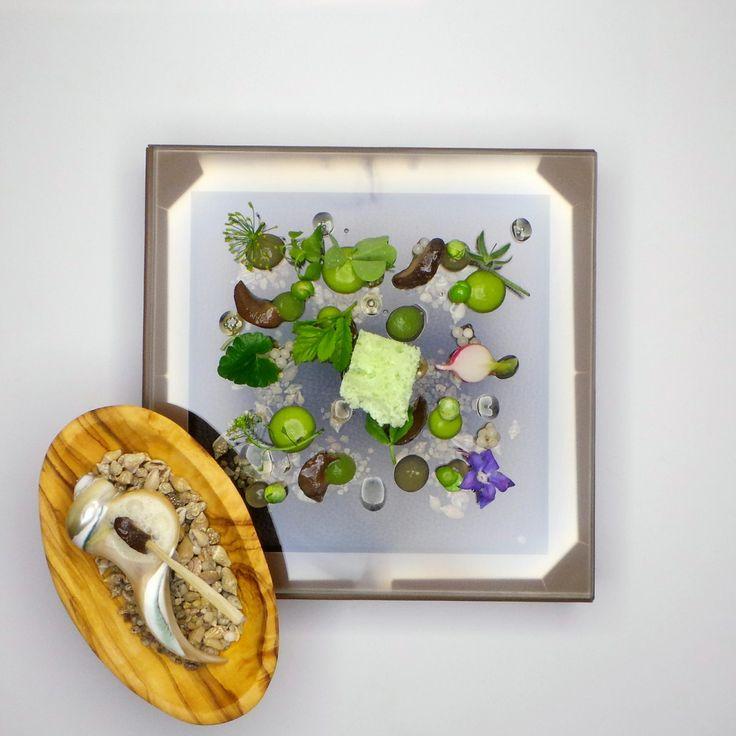 Joachim Wissler | Baden Snail garden