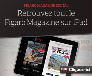 Le Figaro. A french newspaper online.
