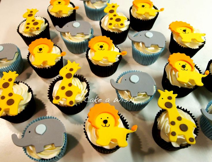 #zoo #cupcakes