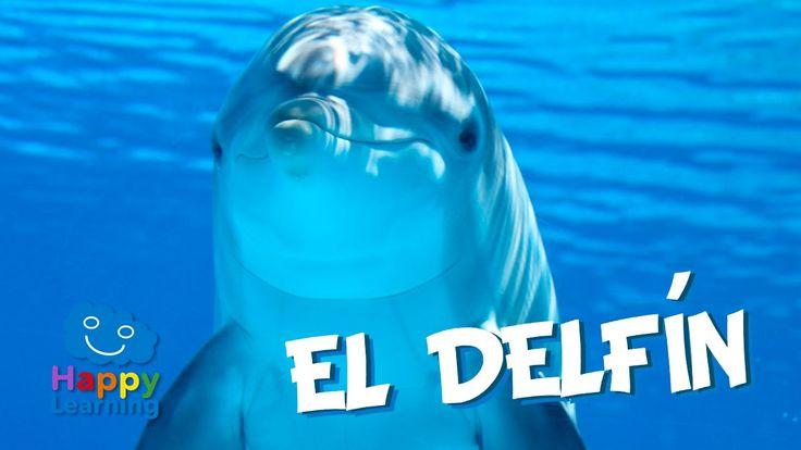 Los delfines son mamíferos acuáticos que habitan en casi todo los mares del planeta. Aunque viven en mar abierto hay muchas veces que se acercan casi hasta l...
