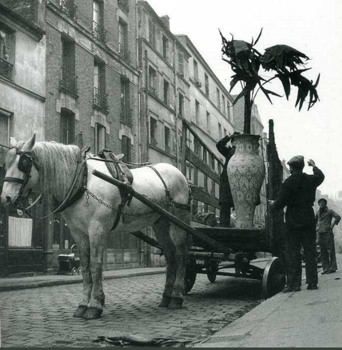 "#Robert Doisneau Photography|""La plante en pot"", rue du Département, en 1952. Une photo de © Robert Doisneau (Paris 18ème/19ème)"