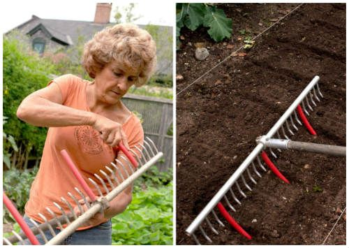 The Ultimate Way To Lay Out A Planting Bed - If you want to produce crops that are healthy, not chocked out by other veggies and actually harbor less bugs and creepy crawlies, then setting up your garden bed correctly is paramount.