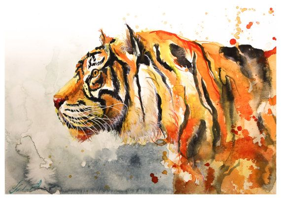 #Watercolor #Painting Of #Tiger  by Ivars Selickis